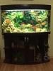 Продам панорамный аквариум на 180 л с тумбой