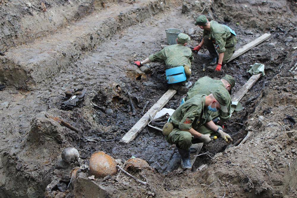 Под Киришами найдены останки 24 бойцов РККА